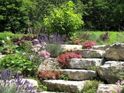 Tipps zum Steingarten