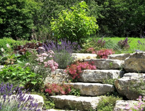 Steingarten – eine pflegeleichte Alternative?